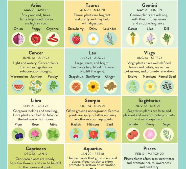 What to Eat Depending on Your Zodiac Sign?